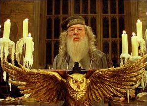 _40967638_dumbledore
